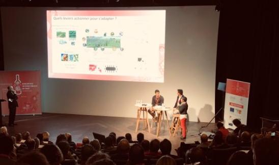 """La PTV participa en la 5ª edición de """"Rencontres Internationales du Rosé"""""""