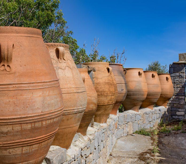 Avances del Proyecto GOVALMAVIN (Valorización de materiales tradicionales para vinificación de vinos de calidad)