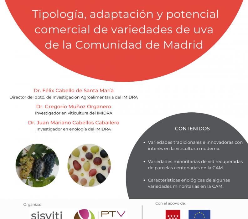 """Webinar """"Tipología, adaptación y potencial comercial de variedades de uva de la Comunidad de Madrid"""""""