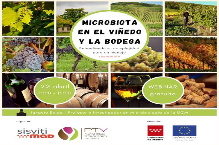 """Webinar """"Microbiota en el viñedo y la bodega: entendiendo su complejidad para un manejo sostenible"""" – Vídeo completo"""