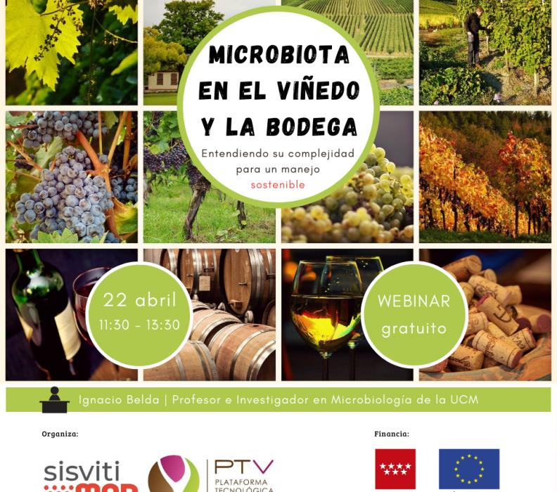 """Webinar """"Microbiota en el viñedo y la bodega: entendiendo su complejidad para un manejo sostenible"""""""
