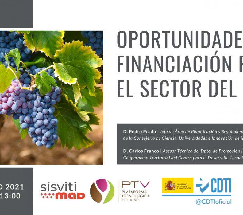 """Webinar """"Oportunidades de financiación para el sector del vino"""""""