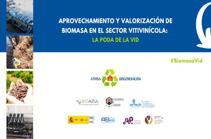 Aprovechamiento y valorización de biomasa en el sector vitivinícola: la poda de la vid